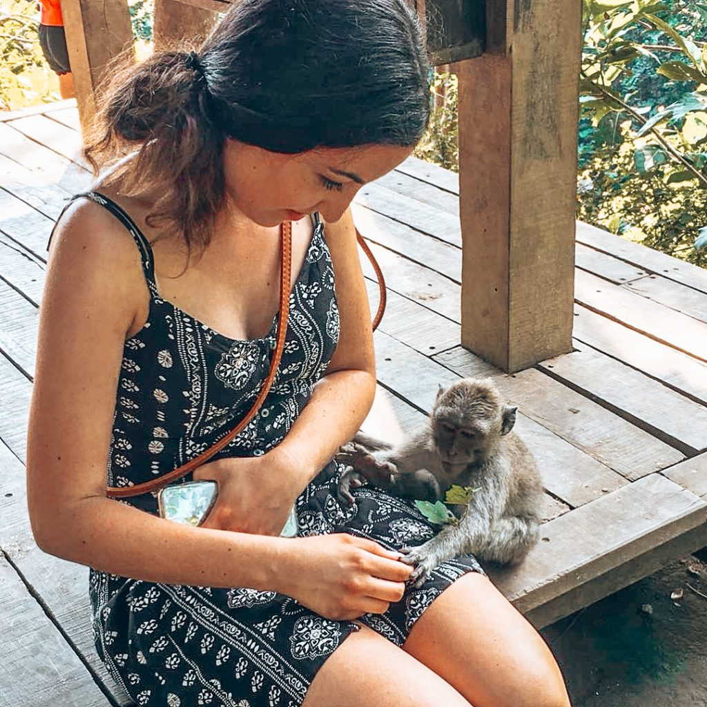 Sacred Monkey Forest Sanctuary Ubud - Bali Itinerary: 10 Days in Paradise