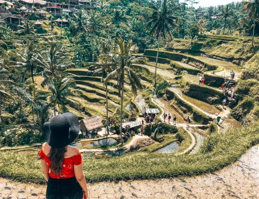 The Best of Ubud!